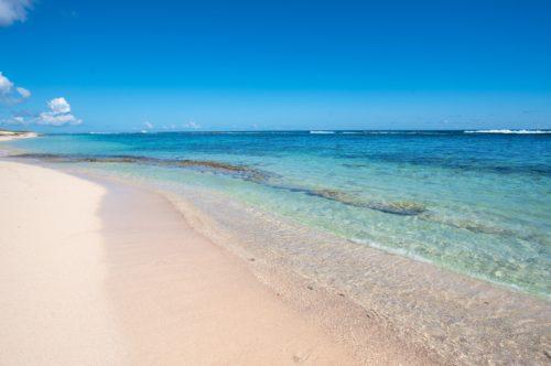 plage-salines-saint-francois-guadeloupe-guillaume-aricique (3)
